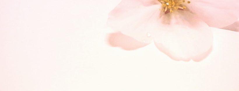 online英会話,オンラインレッスン,オンライン英会話, Skype英会話,Quarantine,静岡市,静岡英語,出張レッスン,プライベートレッスン,単語,熟語,イディオム,アメリカ英語,英会話,英検,英語,意味,和訳,英語の勉強,バイリンガル,子供英語,子供英会話,バイリンガル,子供バイリンガル,April,4月,2020,